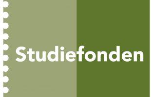 Stipendium från Svenska studiefonden