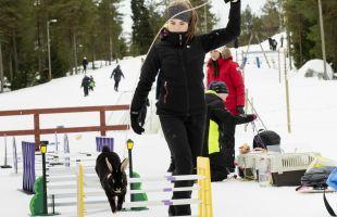 Kaniner på vinterkarneval och Kulturfondens förbundspaket