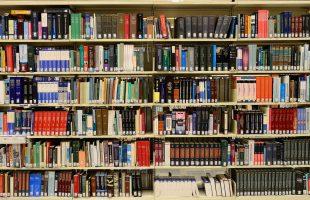 Fortbildningsresa för biblioteksanställda flyttas till 2021