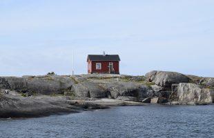 Nyländska bidrag att söka i september